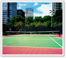 Backyard and Professional Tennis Courts